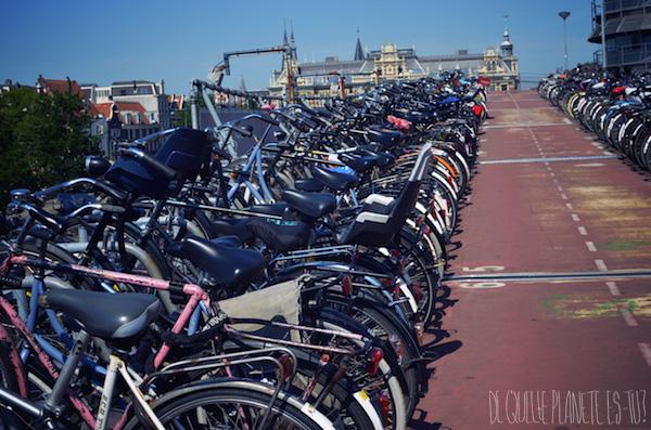 Amsterdam, Summer, Visit, Netherlands, Bikes, De quelle planète es-tu?