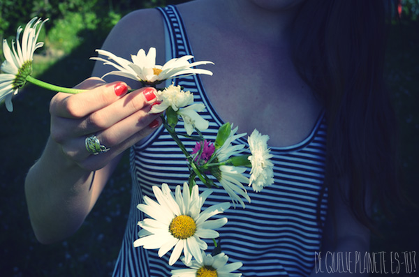 Flower crowns, Couronne de fleurs, Montargis, Girly girl, Countryside