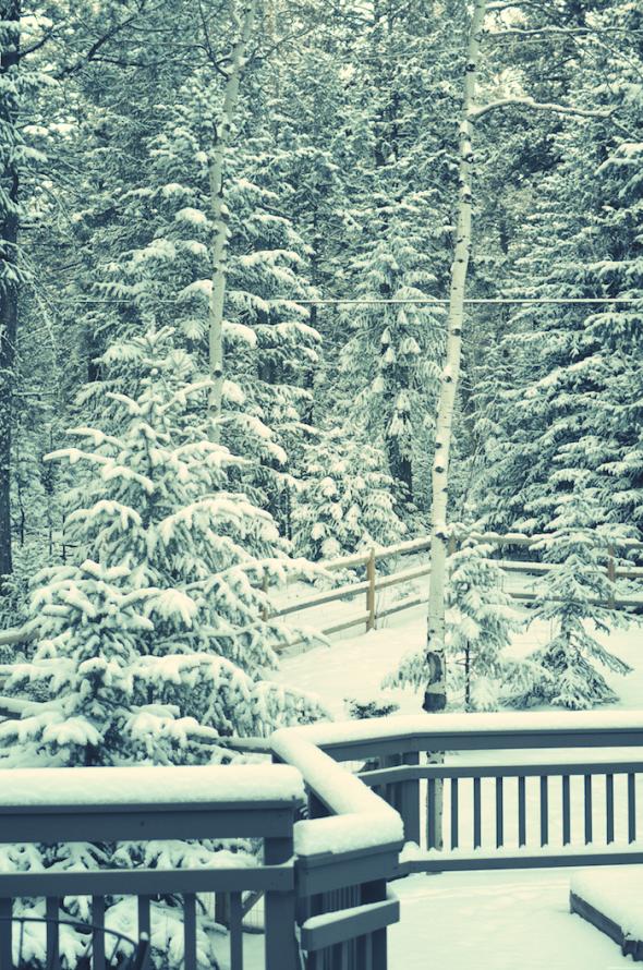 Sunday Snow - De quelle planète es-tu